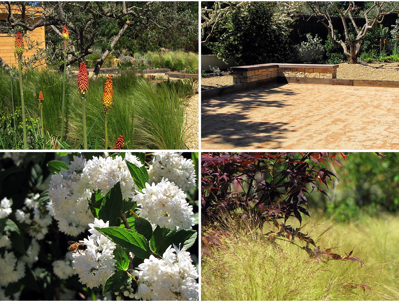 Atelier Naudier - Architecte paysagiste concepteur - Montpellier & Aix en Provence - Jardin naturel contemporain - BANC - aménagement jardin - FRANCE 3 IN SiTU