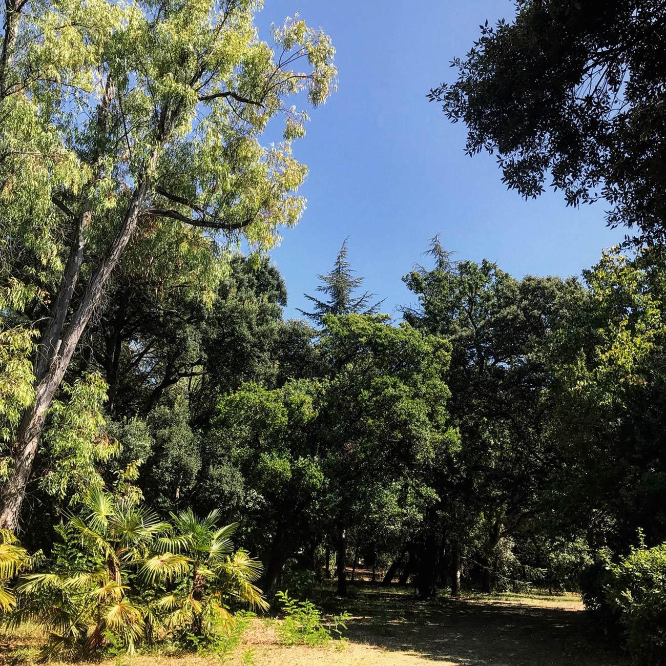 JARDINS DU CHATEAU DE FLAUGERGUES - Jardin paysage - Atelier Naudier -Architecte Paysagiste concepteur - Montpellier & Aix en Provence