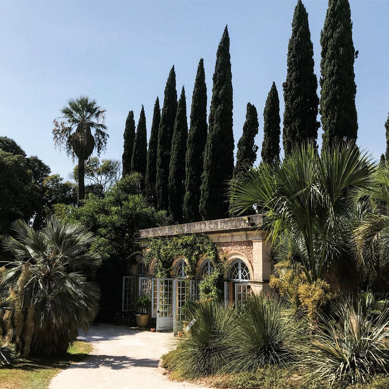 JARDINS DU CHATEAU DE FLAUGERGUES - Orangerie et massifs exotique - Atelier Naudier -Architecte Paysagiste concepteur - Montpellier & Aix en Provence