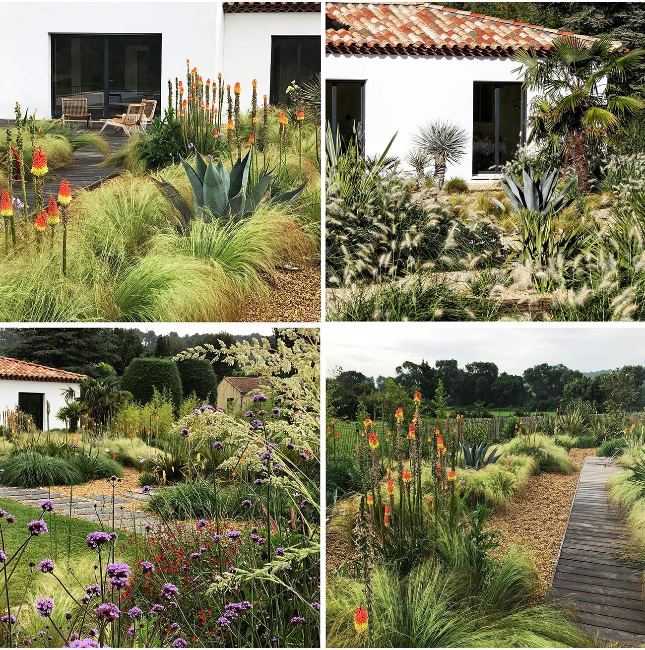Atelier Naudier - Architecte paysagiste concepteur - Montpellier & Aix-en-Provence - AMBIANCE JARDIN EXOTIQUE MÉDITERRANÉEN - Aménagement jardin